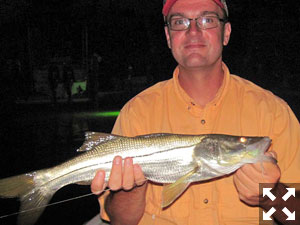 Tom Neal holds a snook he caught night fishing with Capt. Rick Grassett in a previous August.