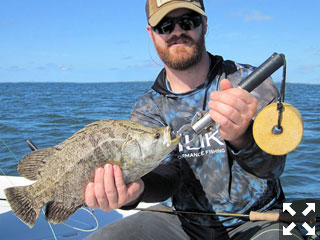 Kyle Roland, from Indianapolis, caught and released tripletail on flies while fishing on different trips recently with Capt. Rick Grassett.