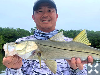 Jon Yenari, from Sarasota, had good action catching and releasing snook and reds on CAL jigs with shad tails while fishing Tampa Bay with Capt. Rick Grassett.