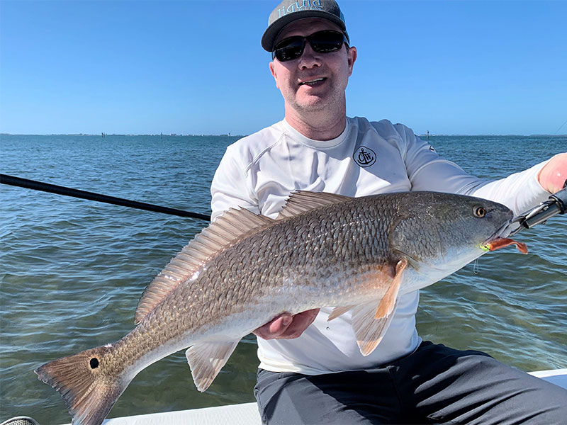 Brian Nafzinger, from Rehoboth, DE, had good action catching and releasing numerous reds on CAL jigs with shad and grub tails on a couple of different trips with Capt. Rick Grassett.