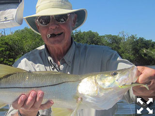 Keith McClintock, from Lake Forest, IL  had good action catching and releasing snook and in backcountry areas of Gasparilla Sound while fishing with Capt. Rick Grassett in a previous February.