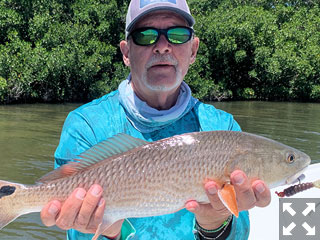 Mike Perez, from Sarasota, with a red he caught and released on a CAL jig with a grub tail while fishing Sarasota Bay recently with Capt. Rick Grassett.