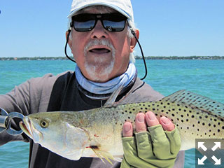 Bill Morrison, from Anna Maria, with a nice trout caught and released on an Ultra Hair Clouser fly while fishing Sarasota Bay recently with Capt. Rick Grassett.