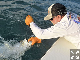 Capt. Rick Grassett draws in a Tarpon Dave Reinhart caught and released while fishing in a previous June.