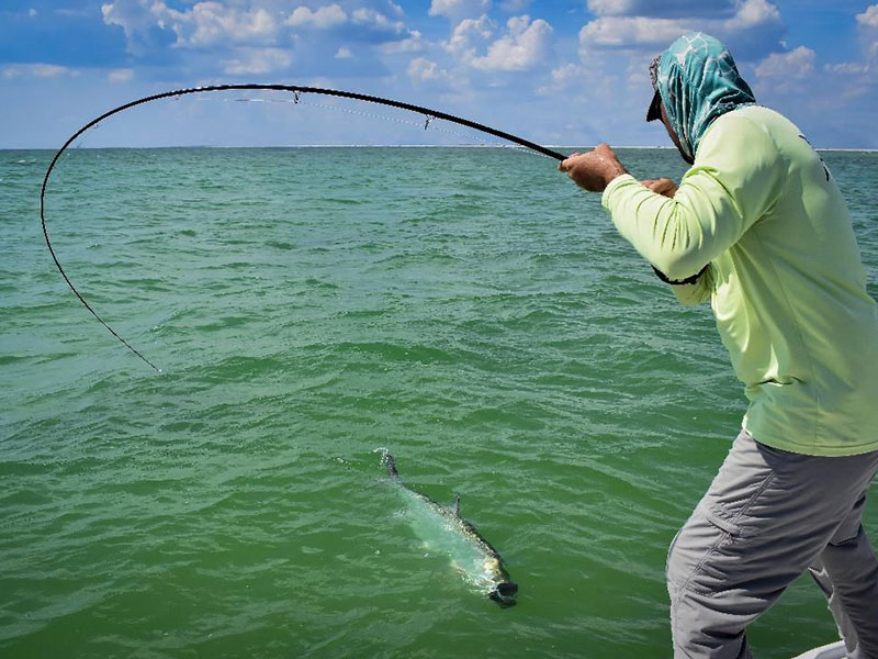 Justin Hamblett, from Sarasota, fights a tarpon that was caught and released on a fly while fishing with Capt.