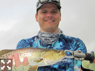 October is a great month to fish skinny water. Kyle Ruffing, from Sarasota, with a nice snook and trout caught and released on a top water plug while fishing Tampa Bay with Capt. Rick Grassett in a previous October.