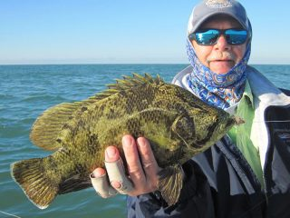 Mike Perez again, this time with a tripletail caught on flies while fishing the coastal gulf in Sarasota with Capt. Rick Grassett in a previous November.