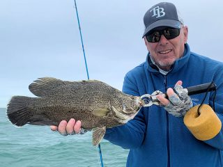 Steve Gibson, owner of Southern Drawl Kayak Fishing in Sarasota, with a tripletail caught and released on a fly while fishing the coastal gulf with Capt. Rick Grassett recently.