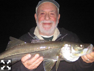 Night snook fishing is usually good through the winter months as long as water temperatures aren't too cold. Sarasota winter resident, Martin Marlowe, caught and released this snook on a Grassett Snook Minnow fly while fishing the ICW at night with Capt. Rick Grassett in a previous January.