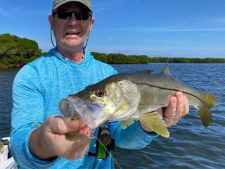 That's one beautiful fish caught and released in Sarasota Bay.