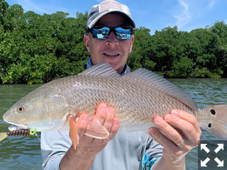 Dave Reinhart, from MA, had good action with reds in Sarasota Bay on CAL jigs with a variety of plastic tails while fishing with Capt. Rick Grassett in a previous March.