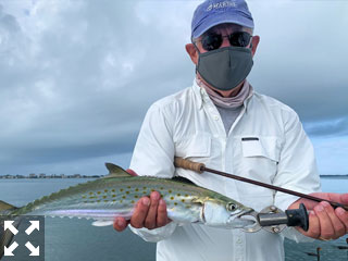 Alan Sugar with a Spanish mackerel caught and released on a Clouser fly while fishing Sarasota Bay with Capt. Rick Grassett.