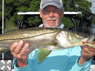 Mike Perez, from Sarasota, with a snook caught and released on a CAL jig with a shad tail while fishing Tampa Bay with Capt. Rick Grassett in a previous April.