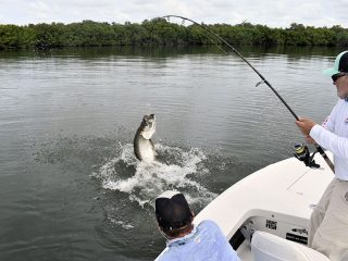 Capt. Rick Grassett in a previous June fights a mighty Tarpon.