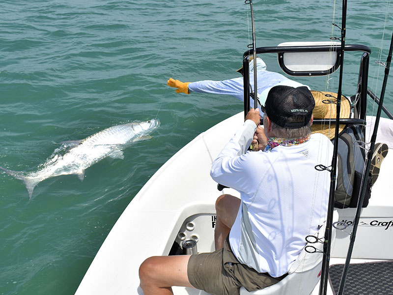 Dennis Ondercin, from Middleburg, Hts, OH, fights a tarpon that he caught and released while fishing the coastal gulf with Capt. Rick Grassett recently.